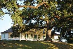 Plantation, Baton-Rouge