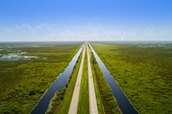 Alligators alley, Everglades National Park