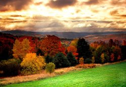 Green Mountains - Automne