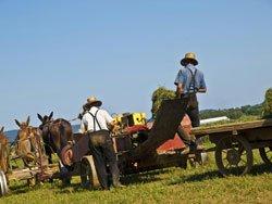 Amish de Lancaster