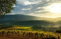 La vallée des vins, CA