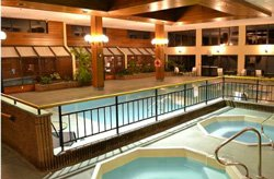 Holiday Inn Rutland - Piscine