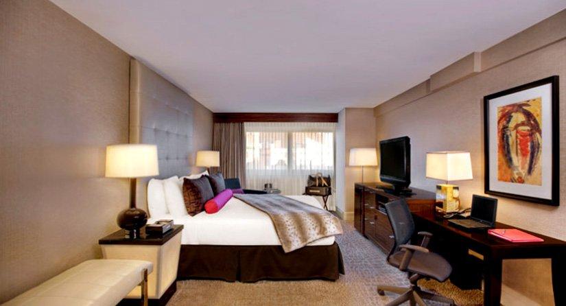 Palomar DC - Suite