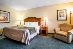 Comfort Inn Big Sky - Chambre lit King