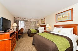 Comfort Inn Cody - Chambre 2 lits