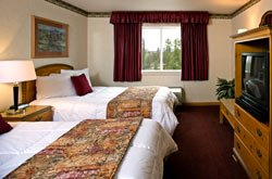 Gray Wolf Inn & Suites - Chambre 2 lits