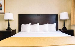 Quality Inn & Suites Seattle - Chambre