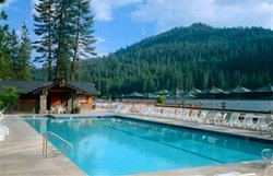 The Pines Resort - Piscine