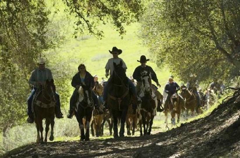 Équitation au Rancho Oso