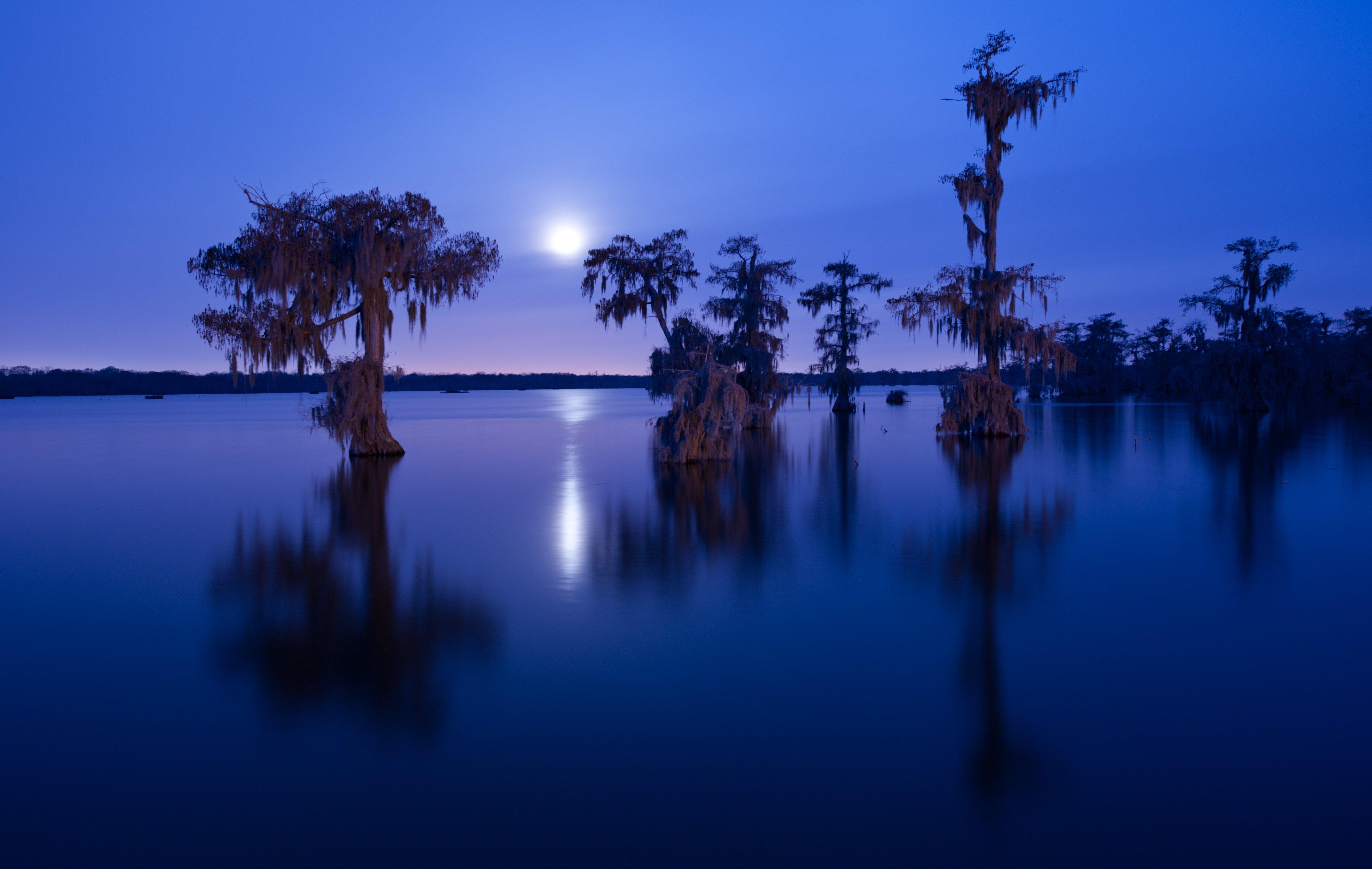 Découvrez 14 destinations de la Floride et de la Louisiane aux États-Unis