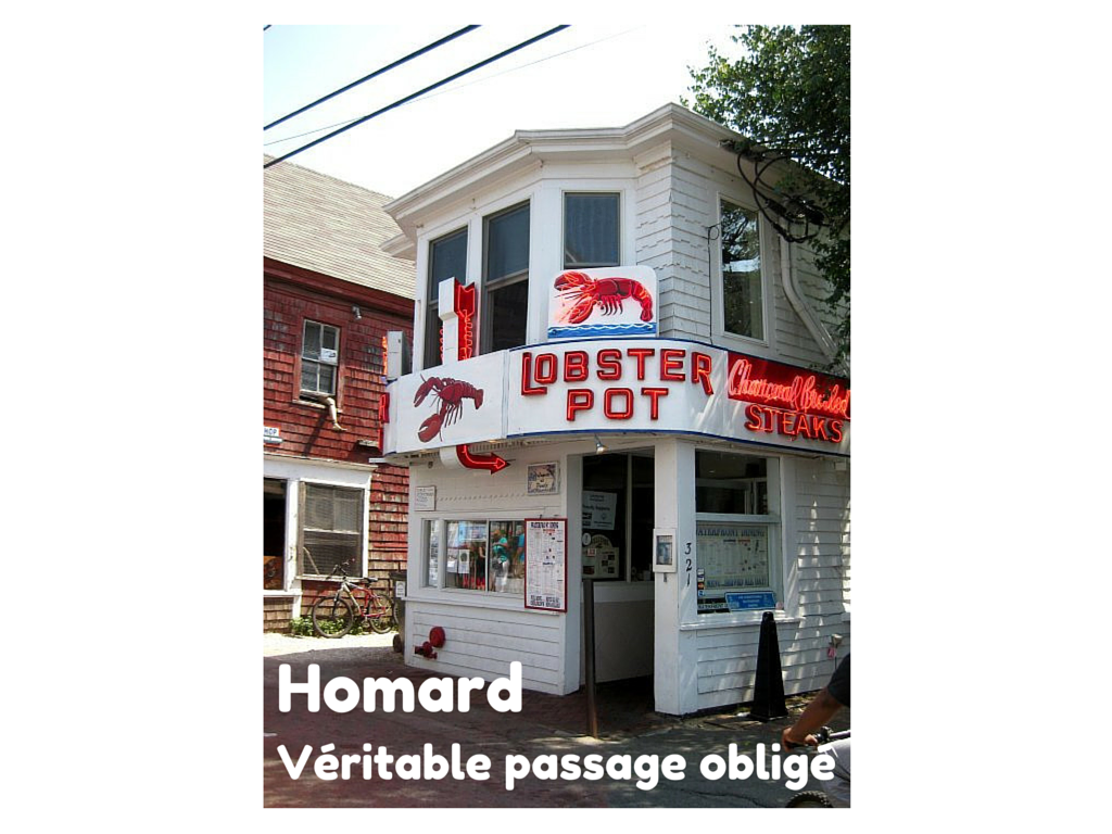 4 choses à faire à Cape Cod : Homard