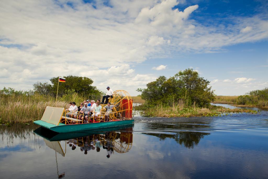 Observation de la faune en Floride du Sud-Ouest - Alligators