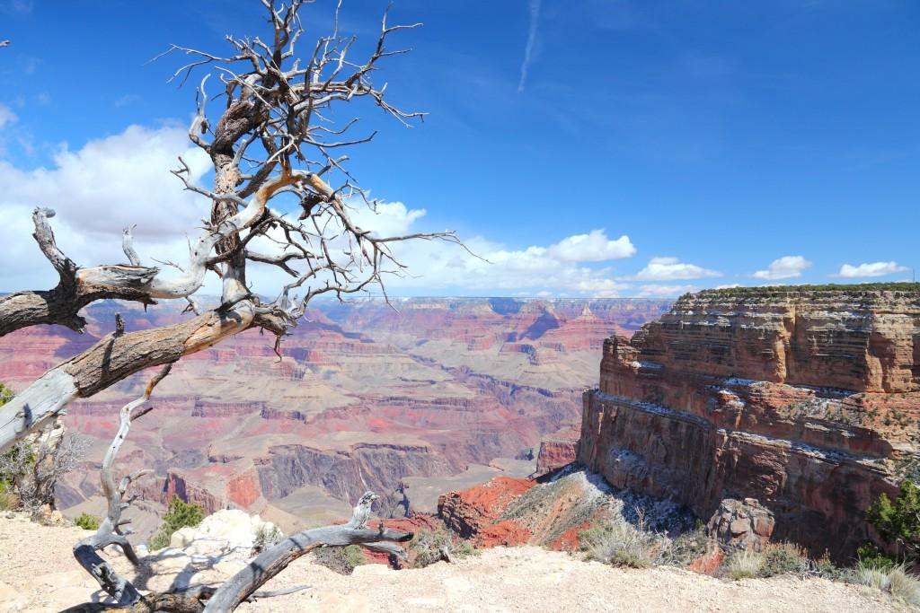 Les 5 plus beaux points de vue sur le Grand Canyon : Mohave Point